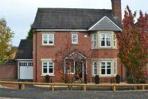 4 bed Detached house in Canberra Way, Burbage...