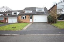 4 bed Detached property to rent in Hampshire Drive...