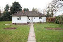 3 bed Detached Bungalow to rent in Bristol Road, Selly Oak...