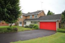 4 bed Detached home to rent in Antringham Gardens...