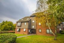 Ground Flat to rent in Humphrey Middlemore...