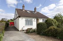 5 bed Detached Bungalow in Highfield Avenue, Booker...