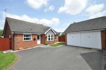 Detached Bungalow for sale in Sundew Close, Worcester...