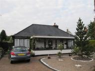 The Avenue Detached Bungalow for sale