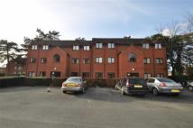 Checketts Court Flat to rent