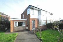 3 bed semi detached home in Harrington Road...