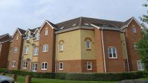 property to rent in 81 Warren House Walk, SUTTON COLDFIELD, B76 1TS