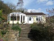 Detached Bungalow for sale in Park Glade, Tintern...