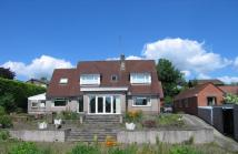 6 bed house in Pentre-Poeth Road...
