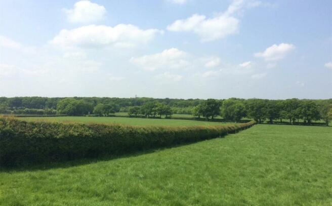Flaxlands