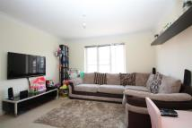 Spoil Flat to rent