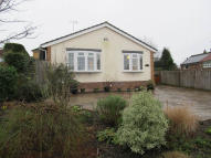 3 bed Detached Bungalow to rent in Lawrie Lane...