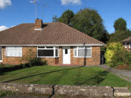 Semi-Detached Bungalow to rent in Dale Avenue, Hassocks...