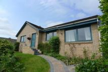 4 bed Detached Bungalow in Schiehallion|Linton Bank...