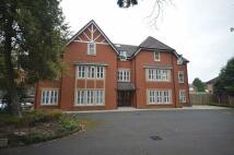 Harborne Park Road Apartment to rent