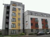 Apartment to rent in Cygnet Court, Holly Lane...