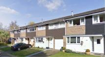 Terraced property to rent in Morningtons, HARLOW...
