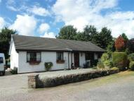 Bungalow in Dykes Terrace, Stanwix...