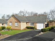 3 bedroom Bungalow in Larch Drive, Stanwix...