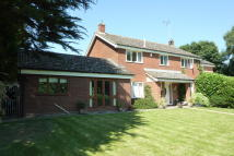 Detached home for sale in BROOK LANE, Playford, IP6