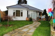 Sydenham Road Bungalow to rent