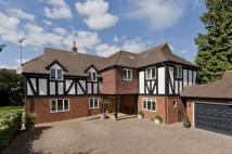 6 bedroom Detached home in Ashley Rise...