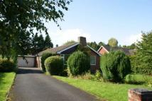 Detached house to rent in Linden Way,  Darras Hall...