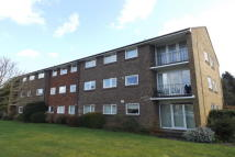 Flat to rent in Kingsway Court...