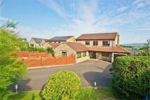 6 bedroom Detached house in Millbrook, Bleadney...