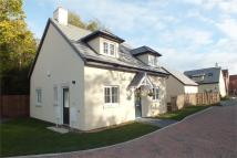 Detached property for sale in Golf Link Mews...