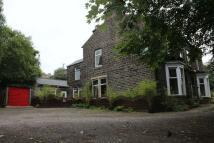 Lodge Lane semi detached property for sale