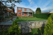 Detached property for sale in Bryn Awelon, Mold...