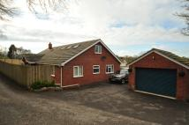 4 bed Bungalow in Cilcain Road  Flintshire