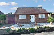 3 bedroom Bungalow in Chestnut Grove...
