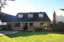 Detached Bungalow for sale in Kingsingfield Road...