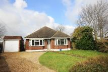 3 bed Detached Bungalow for sale in Orchard Close, New Barn
