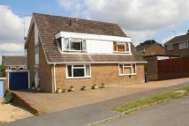 Alder Close semi detached house to rent