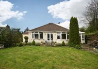 Detached Bungalow for sale in Broadmore Green...