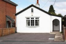Detached Bungalow to rent in Eling