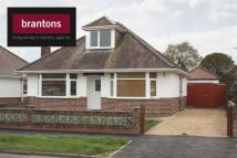Detached Bungalow to rent in Totton