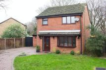 Detached home in West Totton