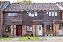 Terraced house in West Totton