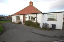 Detached Bungalow to rent in Adderstone Garage...