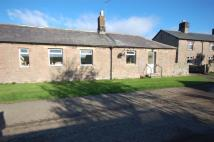3 bedroom Semi-Detached Bungalow to rent in Buckton Farm Cottage...