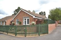 Bungalow for sale in Dudley Close, Whitehill...
