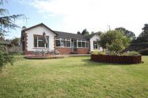 3 bedroom Detached Bungalow in Shrewsbury Road, Prenton