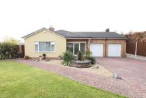 Detached Bungalow for sale in Ringwood, Oxton Wirral