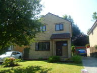 Detached property to rent in The Laurels, Crewkerne...