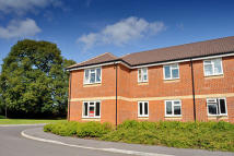 Arnott Close Flat to rent