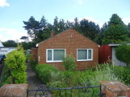 Detached Bungalow to rent in Ashville Drive, Hurworth
